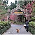 九族文化村櫻花季-2018-02-33.jpg