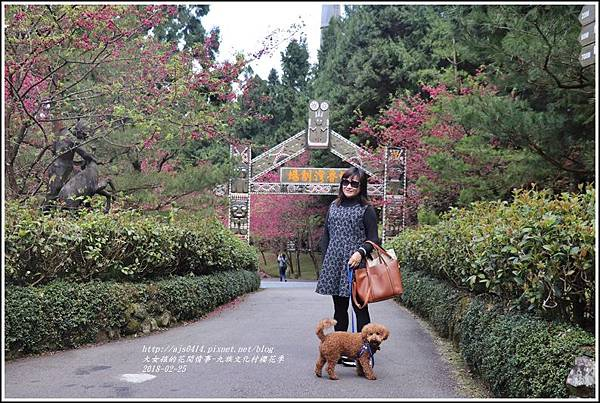 九族文化村櫻花季-2018-02-34.jpg