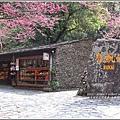 九族文化村櫻花季-2018-02-71.jpg