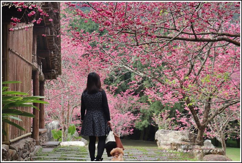 九族文化村櫻花季-2018-02-99.jpg