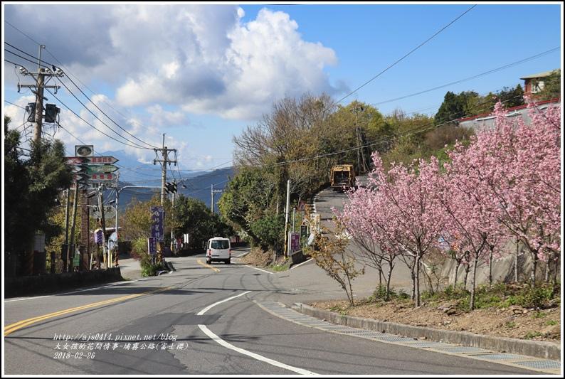 埔霧公路(清境路段)富士櫻-2018-02-18.jpg