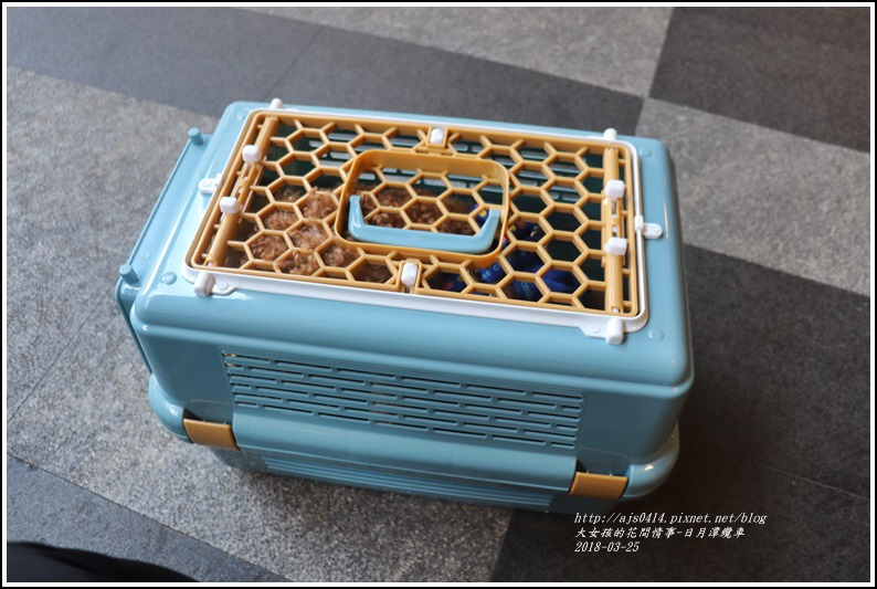日月潭纜車-2018-03-35.jpg