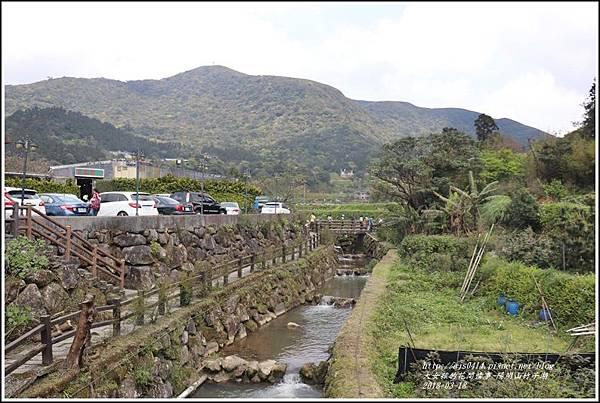 陽明山竹子湖-2018-03-12.jpg