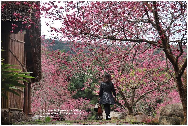 九族文化村櫻花季-2018-02-101.jpg