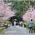 九族文化村櫻花季-2018-02-108.jpg
