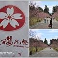九族文化村櫻花季-2018-02-112.jpg