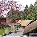 九族文化村櫻花季-2018-02-141.jpg