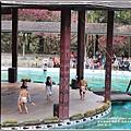 九族文化村櫻花季-2018-02-142.jpg