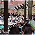 九族文化村櫻花季-2018-02-144.jpg