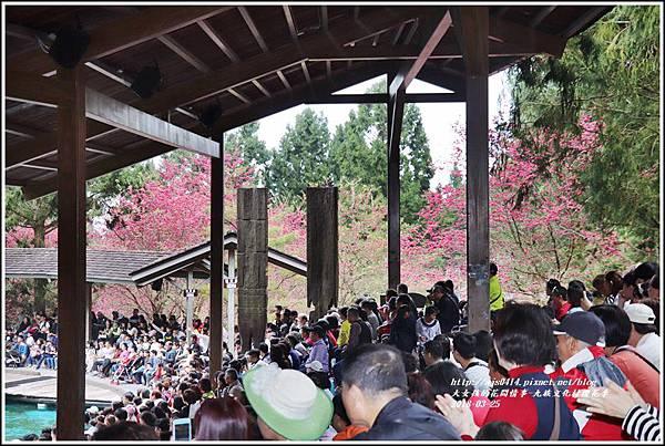 九族文化村櫻花季-2018-02-145.jpg