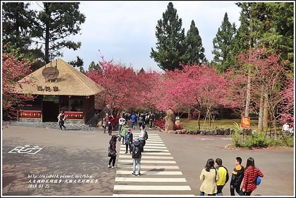 九族文化村櫻花季-2018-02-154.jpg