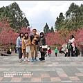 九族文化村櫻花季-2018-02-156.jpg