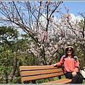 陽明山櫻花季-2018-03-11.jpg