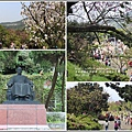 陽明山櫻花季-2018-03-22.jpg