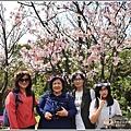 陽明山櫻花季-2018-03-64.jpg