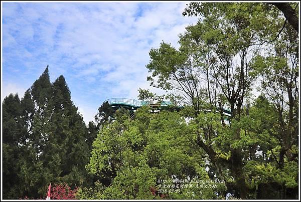 九族櫻花季-2018-02-175.jpg