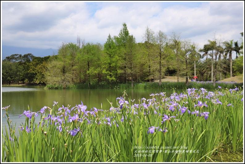 雲山水植物農場鳶尾花-2018-04-02.jpg