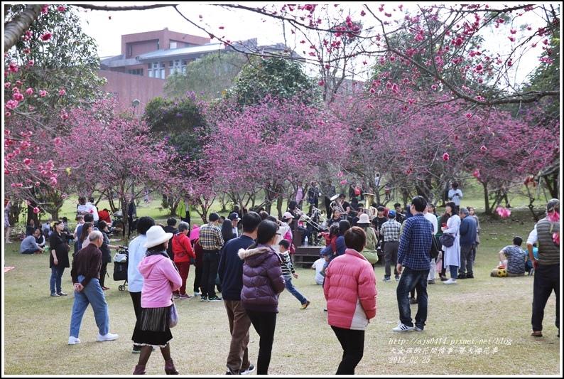 暨大櫻花季-2018-02-14.jpg