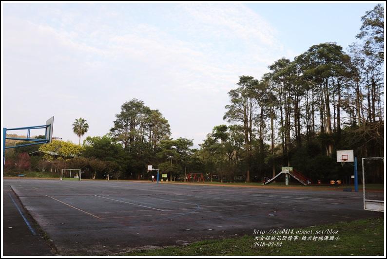 桃米村桃源國小-2018-02-03.jpg