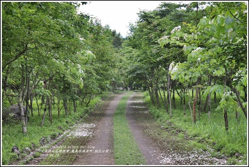 鳳義水源溪畔公園(鳳林桐花公園)-2018-04-02.jpg