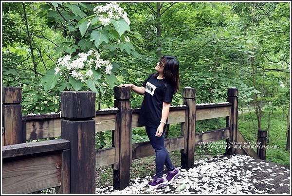 鳳義水源溪畔公園(鳳林桐花公園)-2018-04-16.jpg