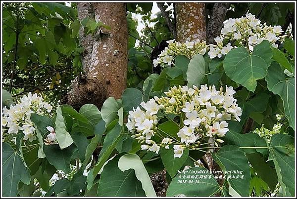 瑞穗虎頭山步道-2018-04-06.jpg