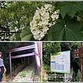 瑞穗虎頭山步道-2018-04-11.jpg