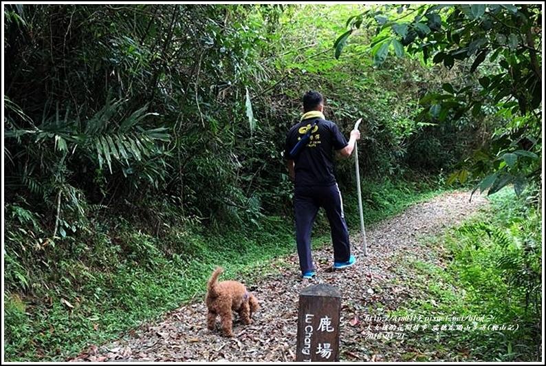 瑞穗虎頭山步道(爬山記)-2018-04-27.jpg