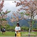 鹿鳴溫泉酒店花旗木-2018-04-04.jpg