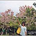 鹿鳴溫泉酒店花旗木-2018-04-07.jpg