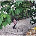 瑞穗虎頭山步道-2018-04-75.jpg