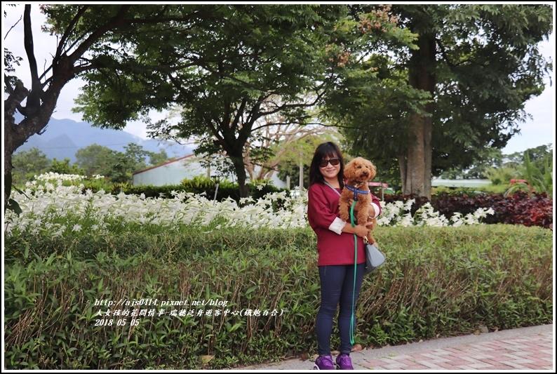 瑞穗泛舟遊客中心(鐵炮百合)-2018-05-06.jpg