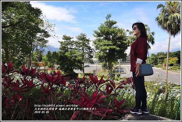 瑞穗泛舟遊客中心(鐵炮百合)-2018-05-31.jpg