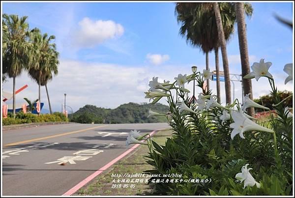 瑞穗泛舟遊客中心(鐵炮百合)-2018-05-42.jpg