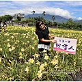 嘉德萱草園-2018-05-28.jpg