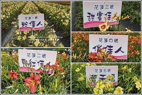 嘉德萱草園-2018-05-42.jpg