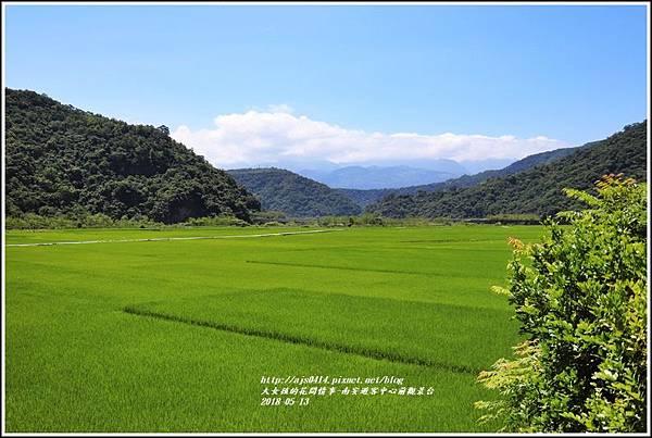 南安遊客中心觀景台稻田-2018-05-01.jpg