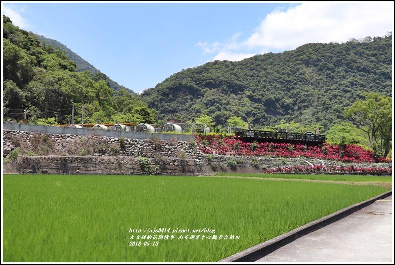 南安遊客中心觀景台稻田-2018-05-10.jpg