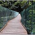 瓦拉米步道-2018-05-24.jpg