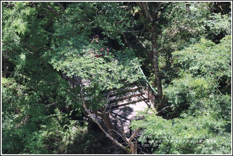 瓦拉米步道-2018-05-33.jpg
