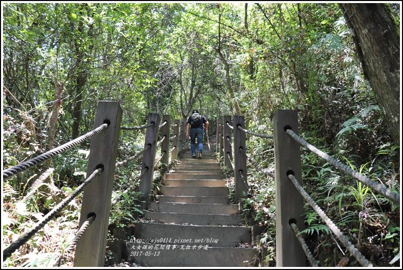 瓦拉米步道-2018-05-42.jpg