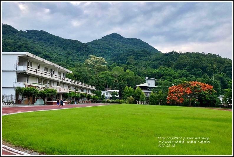 紅葉國小鳳凰木-2018-05-07.jpg