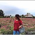 紫錐菊-2018-06-09.jpg