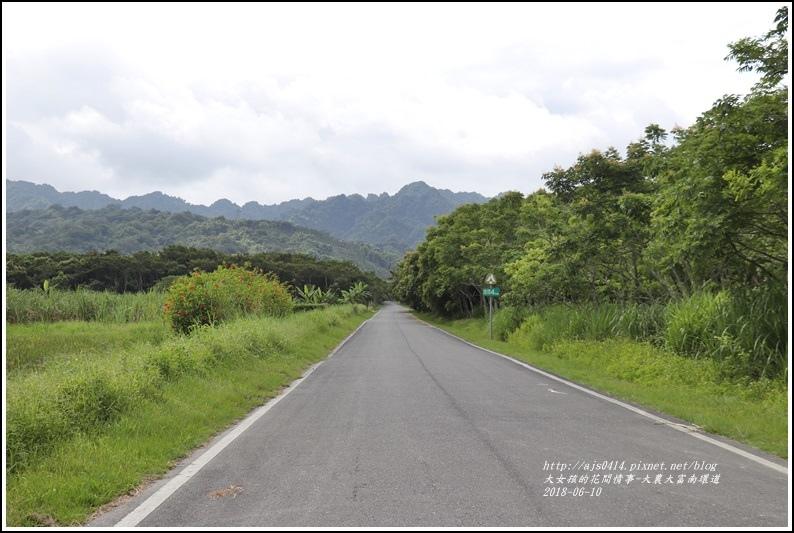 大富荷花田(平地森林南環道)-2018-06-08.jpg