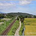 長富大橋(大地色塊)-2018-06-08.jpg