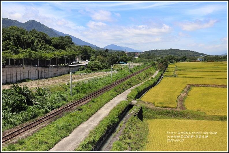 長富大橋(大地色塊)-2018-06-12.jpg