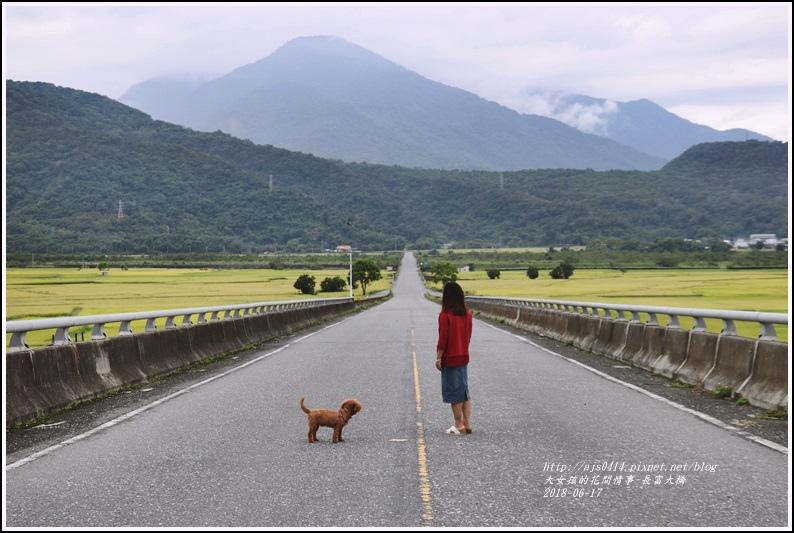 長富大橋(大地色塊)-2018-06-22.jpg