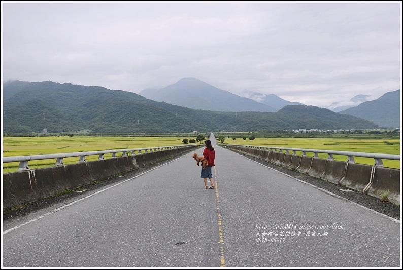 長富大橋(大地色塊)-2018-06-23.jpg