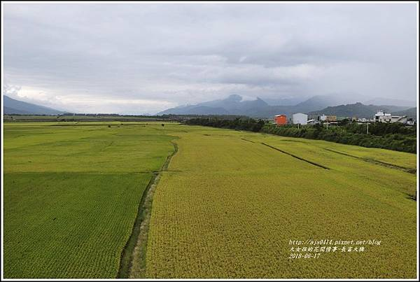 長富大橋(大地色塊)-2018-06-24.jpg