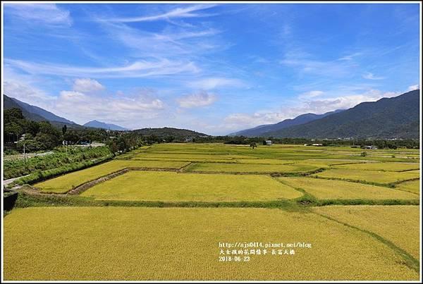 長富大橋(金色大地)-2018-06-29.jpg